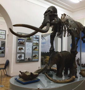 kraevedcheskiy-musei